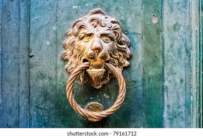 Decorative gilded lion head door knob