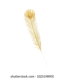 decorative golden feather on white isolated background