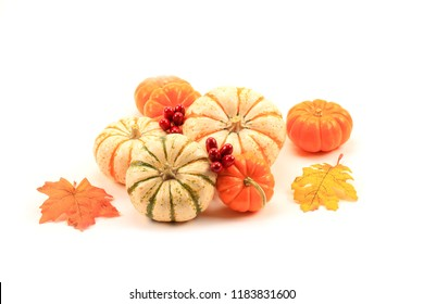 Decorative Gourds on white background