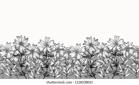 Decorative graphic border of flowers and leaves.