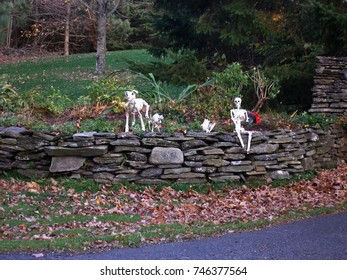 Decorative halloween skeletons guarding a driveway entrance in Quebec, Canada