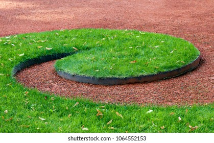 Decorative lawn in a park