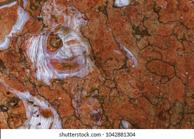 Decorative marble texture. An abstract picture can be used as fashion background for wallpapers, posters, cards, web sites. Design marble texture with high resolution. natural stone background