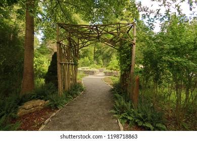 Decorative path in a beautiful, lush park. Summer season.