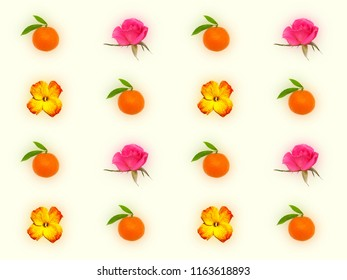 Decorative pattern with yellow red flower of wallflower, pink roses and orange tangerines on light yellow background