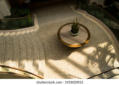 Decorative plant in an elegant indoor space, and a stairwell starting right next to it