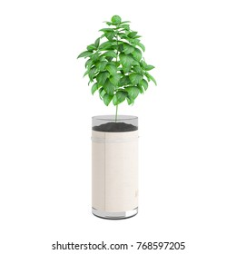 Decorative plant planted glass pot isolated on white background. 3D Rendering, Illustration.