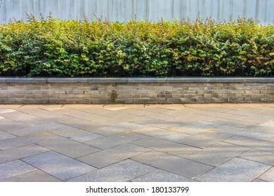 A decorative plants at sidewalk