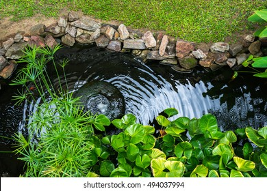 Decorative pond with fountain and gold fish in garden