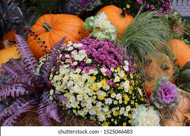 """Decorative pumpkins from """"Golden autumn 2019"""" open festival in Moscow city, near Red Square, Kremlin. Halloween decor with various pumpkins, fall vegetables and flowers. Harvest and garden decoration"""