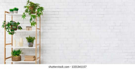 Decorative rack with house plants, books and candeles near white brick wall, copy space. Pure eco design concept