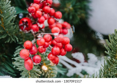 decorative red berries on fir branches, winter decorations selective focus