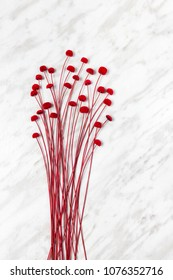 Decorative red flowers on light gray marble background, simple and beautiful decor.