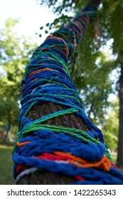 Decorative ropes on the tree.