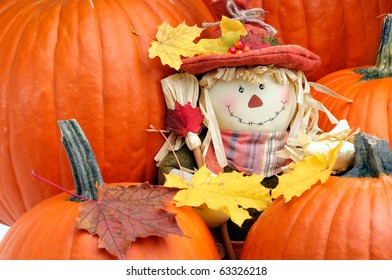 Decorative Scarecrow Surrounded By Pumpkins To Celebrate The Fall Thanksgiving Season