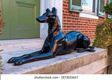 A decorative shiny black dog model put in front of the entrance of a historic brick building in old town. The guard dog sculpture on concrete floor has a realistic original look.