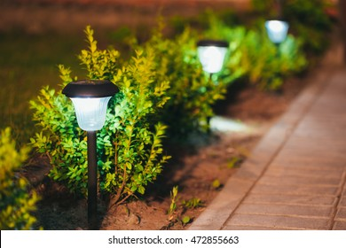 Elegant Decorative Small Solar Garden Light, Lanterns In Flower Bed In Green  Foliage. Garden Design
