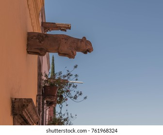 Decorative Spigot-a decorative water spigot, in the form of a big game cat, sticking out from the upper part of a building, in San Miguel de Allende