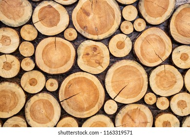 Decorative wall made of wooden cutted pieces of tree as part of decor of photobooth. Horizontal color photography.