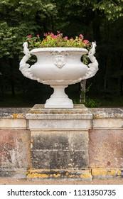 Decorative White Antique Sculptured Vase, Flower Pot in Old European Garden
