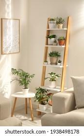 Decorative wooden ladder in stylish living room interior - Shutterstock ID 1938498178