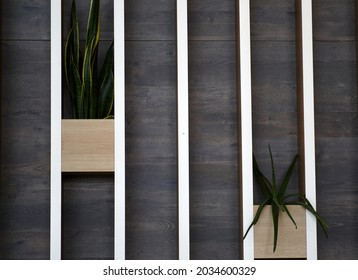 Decorative wooden wall with flower pots. Background. High quality photo