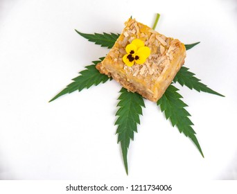 Dedtail of Cannabis infused blondies isolated on white background- medical marijuana edibles concept