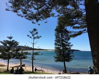 Dee why Beach on Sydney's Northern Beaches