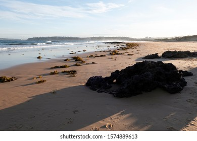 Dee Why Beach view from Long Reef Sydney Northern Beaches