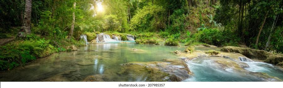 Deep forest waterfall  National Park.