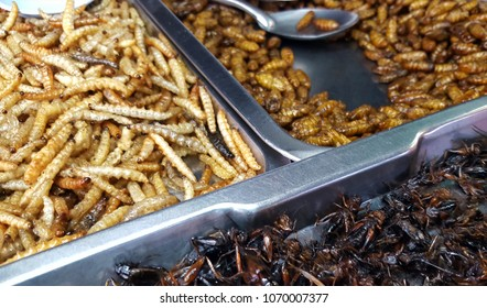 Deep fried insects. Bugs fried sale on the food streets in Thailand.