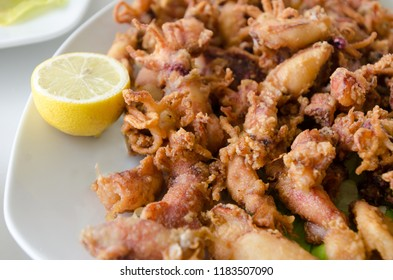 deep fried squids or chipirones with lemon and lettuce. Little cephalopod. typical spanish tapa