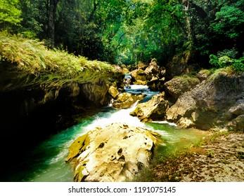 Deep jungle stream in Guatemala