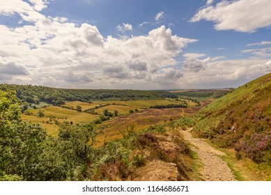 A deep and long valley cut into the North York Moors  The moor stretches out to the horizon and farmland sits on the floor of the valley. A path is in the foreground.