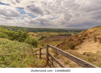 A deep and long valley cut into the North York Moors  The moor stretches out to the horizon and farmland sits on the floor of the valley. A fence is in the foreground.