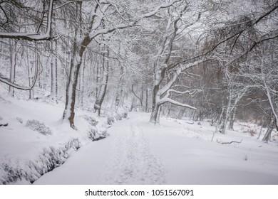 Deep snow in Glendalough , Wicklow Mountains - Ireland