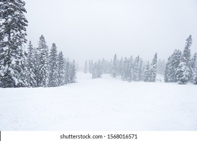 Deep snow at Idaho Ski Resort, Tamarack