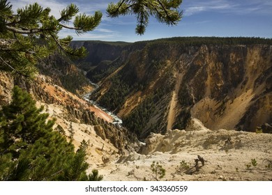 Deep valley of the Yellowstone River, with yellow slope and pines in the foreground, at Grand Canyon of the Yellowstone in Wyoming.