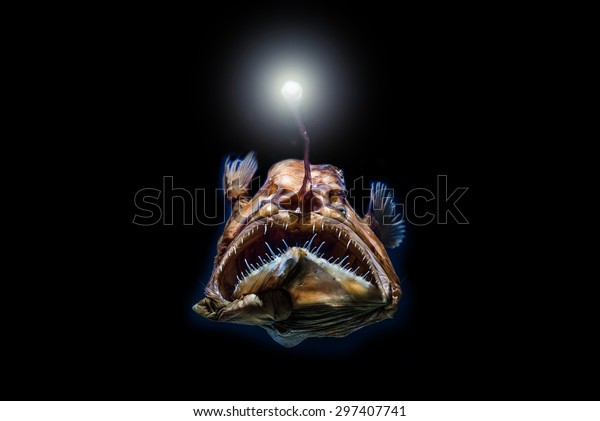 Deep-Sea Stingray