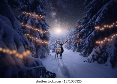 A deer with Christmas decoration in the winter forest