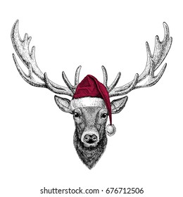 Deer Christmas illustration Wild animal wearing christmas santa claus hat Red winter hat Holiday picture Happy new year