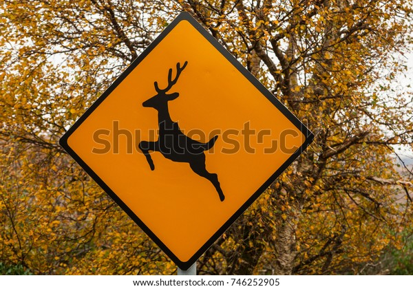 Deer crossing warning sign by the side of the road, autumn background