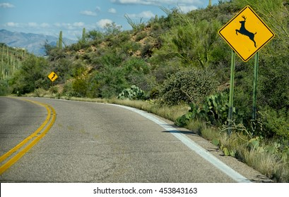 deer crossing warning sign on curvy street in arizona