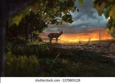 Deer looks at an apocalyptic scenery