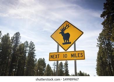 Deer Road Warning Sign. Next 10 miles.