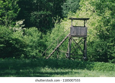 Deer stand hunting tower in green forest on a sunny summer day