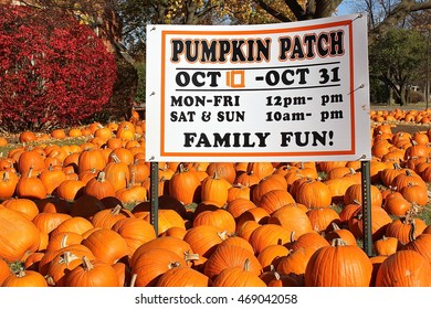 Deerfield, IL, USA - October 28, 2014: A sunny October afternoon outdoor view of the annual Halloween Pumpkin Patch for the community sponsored by St. Gregory's Episcopal Church.