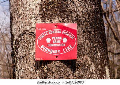 Deerfield Township, Pennsylvania USA 4/5/20 A red metal sign with white writing Public Hunting Grounds Penna Game Commission Boundary Line nailed to a tree
