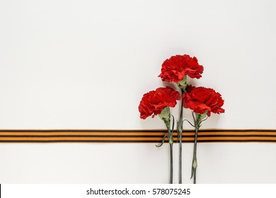 Defender of the Fatherland Day. Red carnations with st george ribbons on the white background. Space for text.