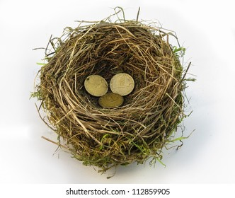 Definition of 'Nest Egg' A special sum of money saved or invested for one specific future purpose
